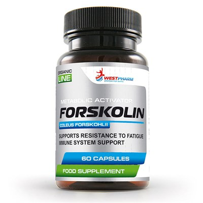 WESTPHARM Forskolin 250mg (60капс) - фото 5097