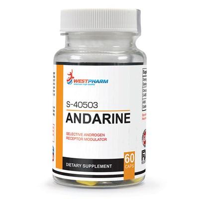 WESTPHARM - Andarine (S-40503) 25мг (60капс) - фото 5151