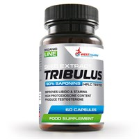 WESTPHARM - Tribulus (60капс)