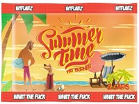 WTFLABZ - Summer Time (1 порция) пробник