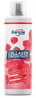 GeneticLab Collagen Support (500мл)