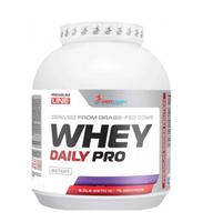 WESTPHARM Whey Daily Pro (2270гр)
